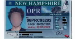 IdHurry.com New Hampshire Review